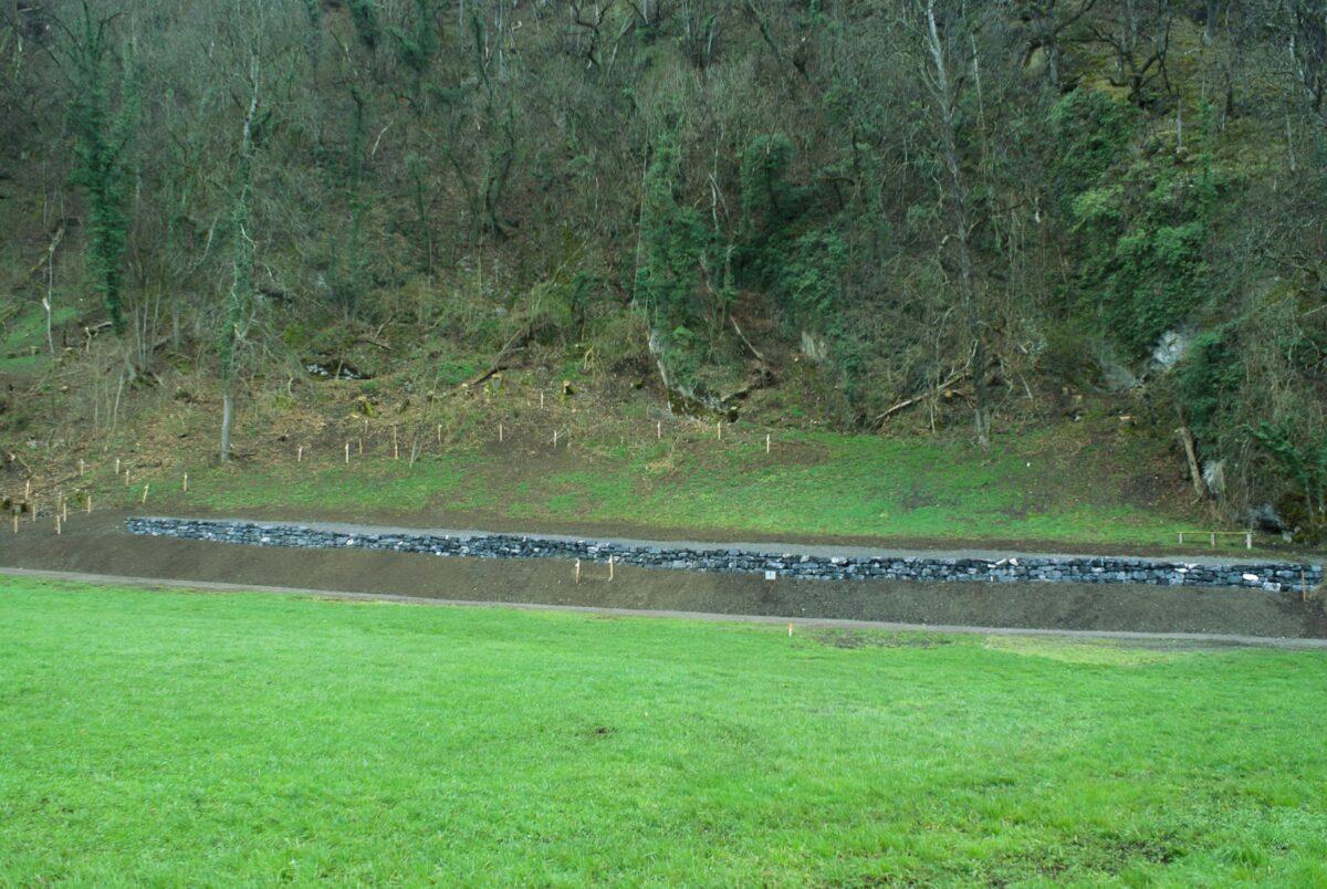 Blick auf eine neuerstellte Trockensteinmauer und einen frisch gepflegten Waldrand