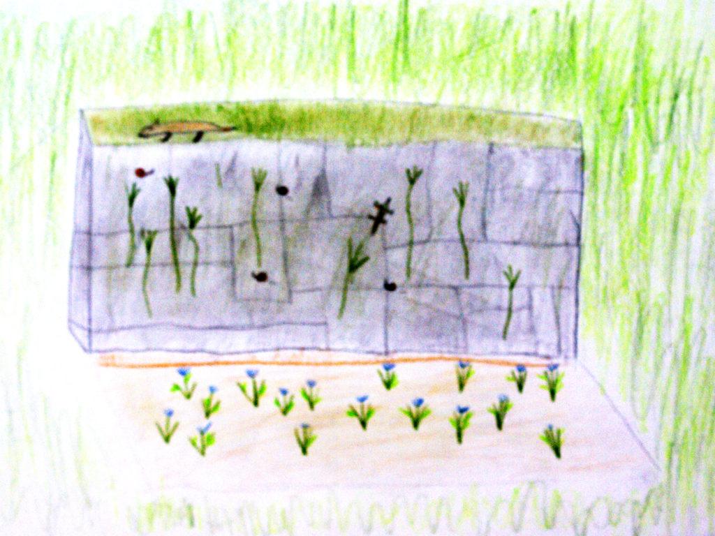 Kinderzeichnung Leben in der Trockensteinmauer
