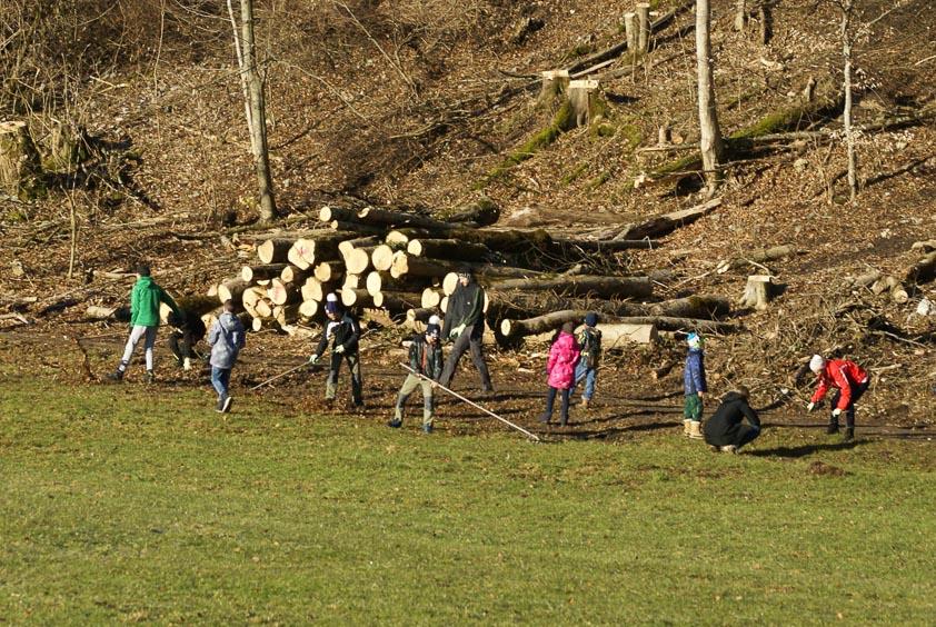 Eine Gruppe Schüler und Schülerinnen pflegt den Waldrand